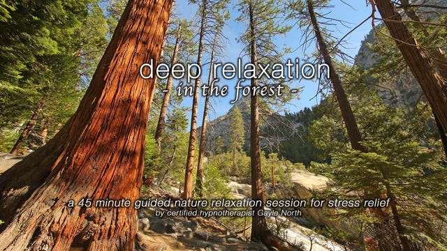 """Deep Relaxation in the Forest"""" 45 Min Guided Therapy Session for Stress Relief"""