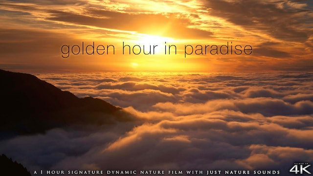 Golden Hour in Paradise 1 HR Dynamic Film (No Music) - Pure Relaxation Series