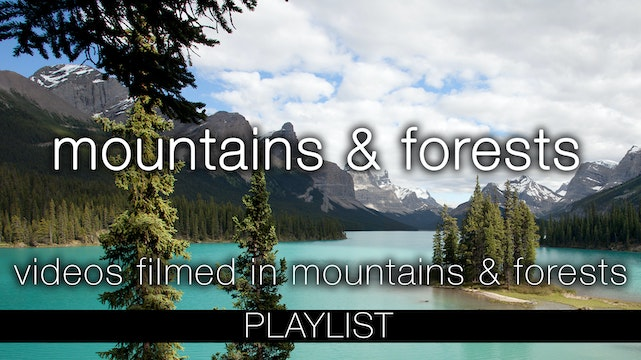 Mountains & Forests Nature Relaxation Videos