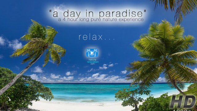 A Day in Paradise 4 HR Nature Relaxation Video Experience Fiji Islands