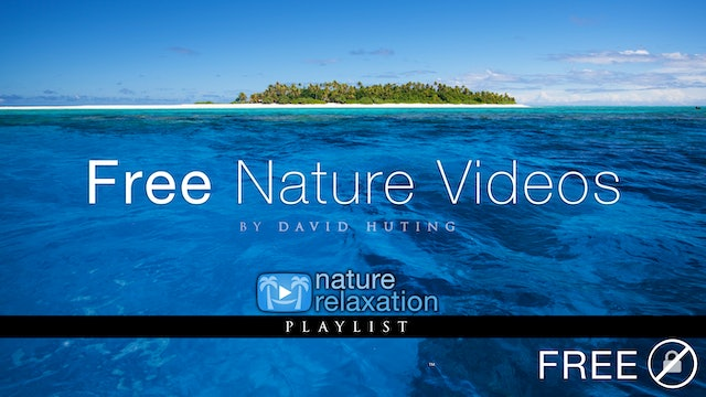 Free to Try Collection - Nature Relaxation™ Films