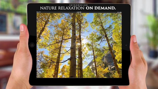 Nature Relaxation™ On-Demand + Apps T...