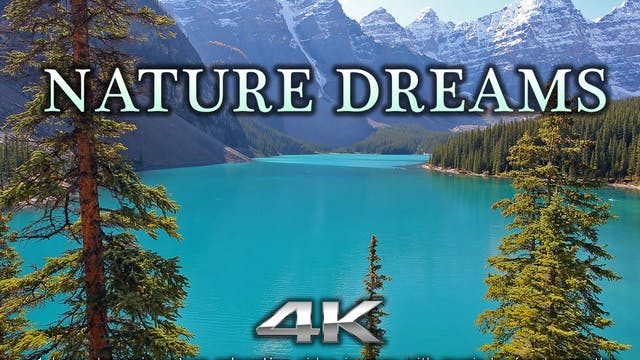 Nature Dreams 1 HR Dynamic Nature Rel...