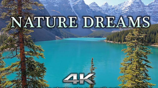 Nature Dreams 1 HR Dynamic Nature Relaxation Video w Music