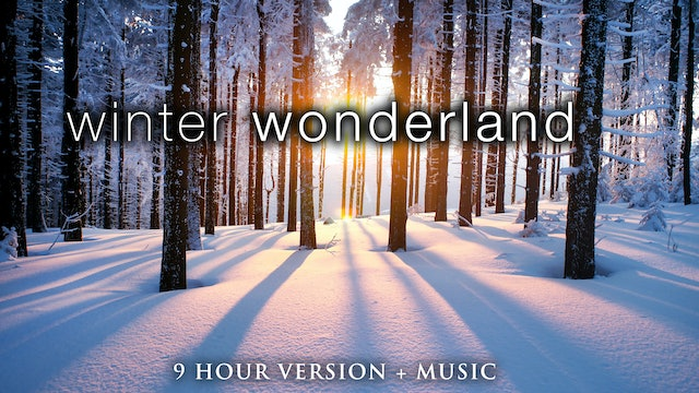 Winter Wonderland [9 Hour Version] + Music - Signature Film
