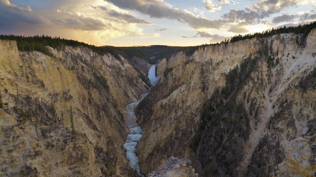 Summer in Yellowstone (w Music) 1HR Dynamic Nature Film