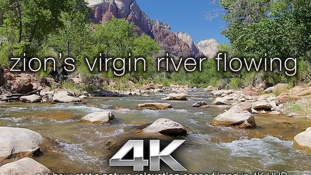 Zions Virgin River Flowing 1 Hour HD Nature Relaxation VIdeo