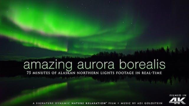 Amazing Aurora Borealis of Alaska 75 ...