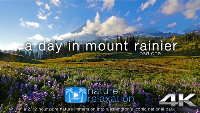 A Day in Mount Rainier Nat'l Park | 2.5 HR Dynamic Nature Film