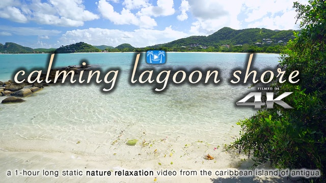 Calming Lagoon Shore 1 Hr 4K Nature Relaxation