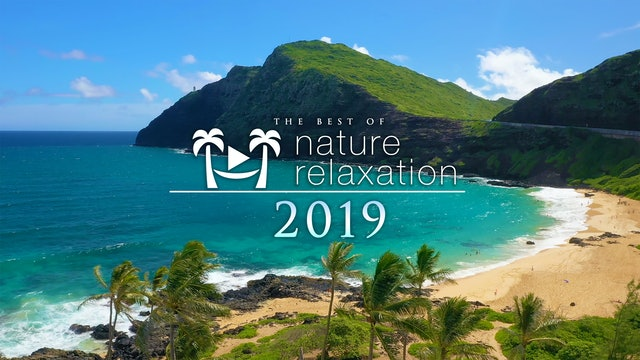 Best of Nature Relaxation 2019 - 10 Hour Mix