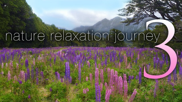 NATURE RELAXATION JOURNEY 3 | a Dynamic Signature Film