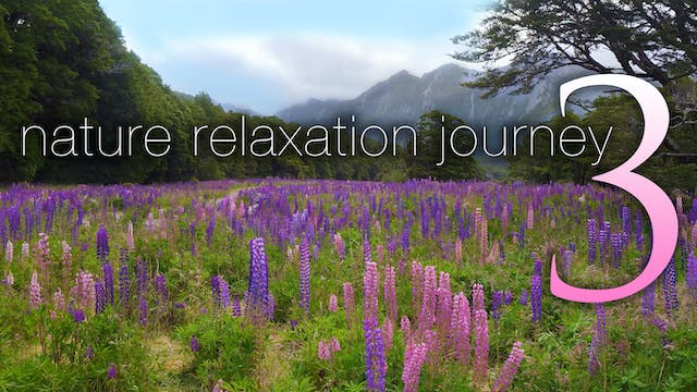 NATURE RELAXATION JOURNEY 3 | a Dynam...