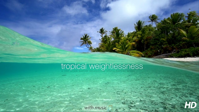 Tropical Weightlessness  (+Music) 1 HR Static Scene from Tahiti
