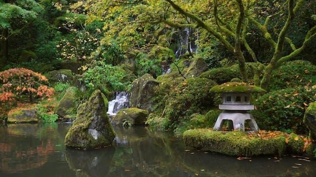 Zen Garden Meditation 4K Nature Relax...