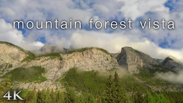 Mountain Forest Vista (4K) 1 Hour Static Nature Scene from Banff, Alberta