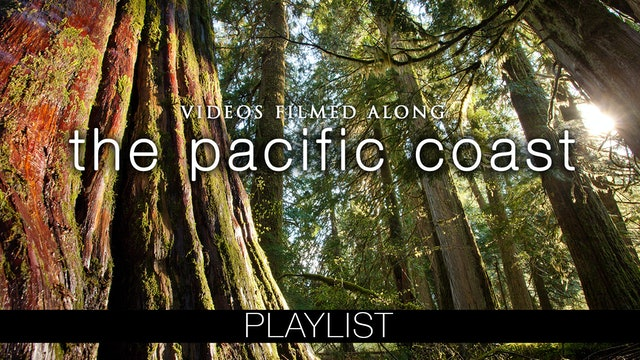 The Pacific Coast USA