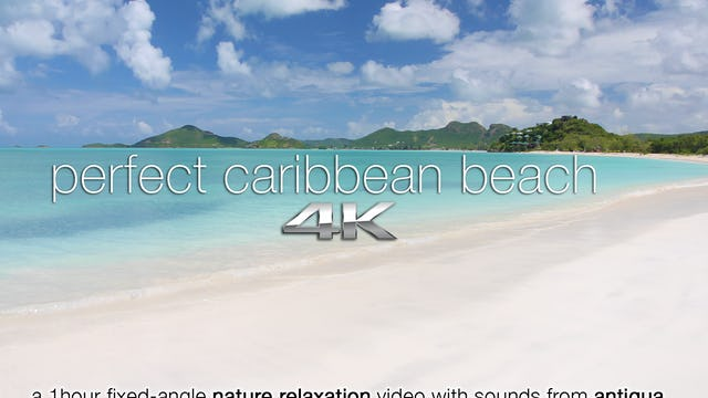 Perfect Caribbean Beach | 1 HR Static Antigua Beach Scene