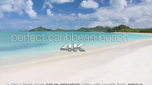 Perfect Caribbean Beach | 1 HR Static...