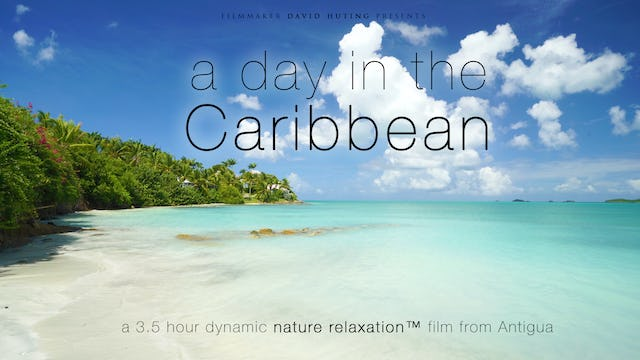 A Day in the Caribbean 3.5HR Dynamic Film (No Music) from Antigua