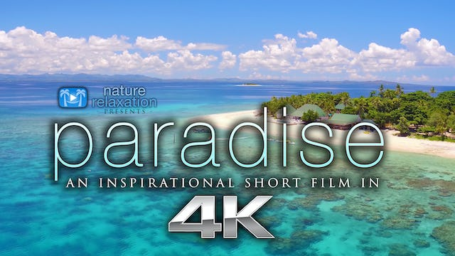 PARADISE | a Synchronized Inspirational Short Film in 4K