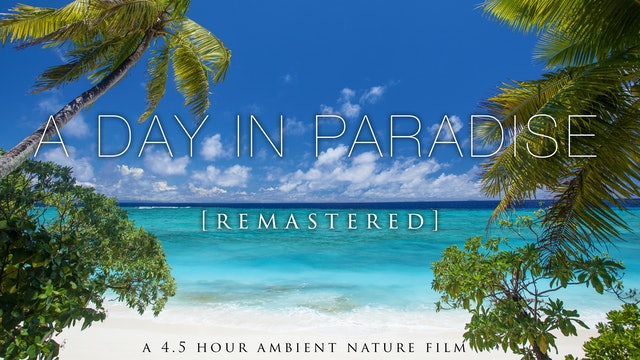 """A Day in Paradise"" [Remastered] 4 Hours on An Uninhabited Tropical Island FIJI"