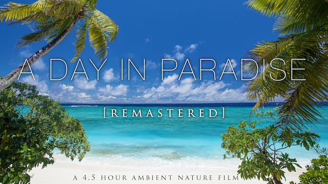 """A Day in Paradise"" [Remastered] 4 Ho..."