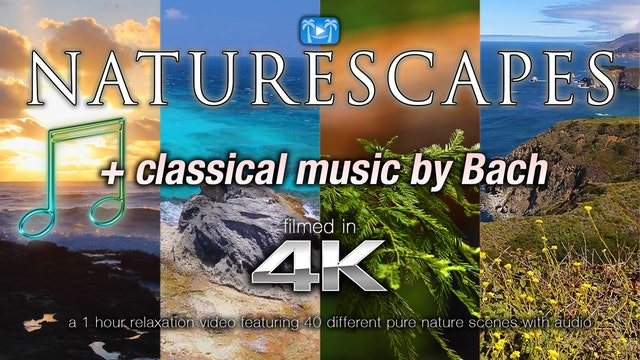 Naturescapes 1 Hour Relaxation w Classical Music