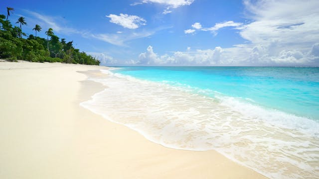 Tropical Ocean Waves 11 Hour Mix: Haw...