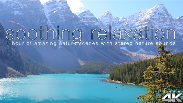 Soothing Relaxation 1HR (No Music) Dynamic Film