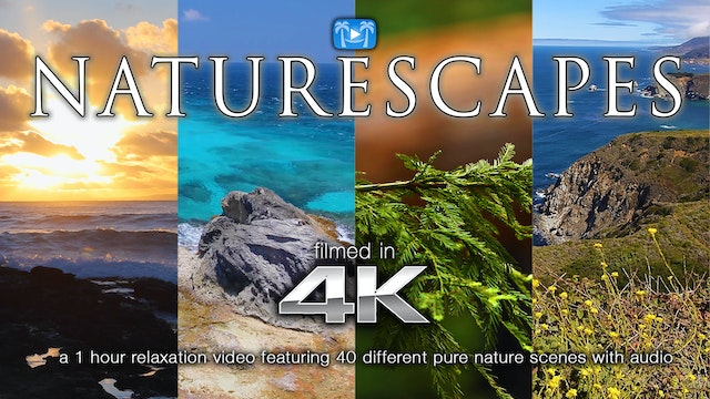 Naturescapes 1 Hour HD Nature Relaxat...