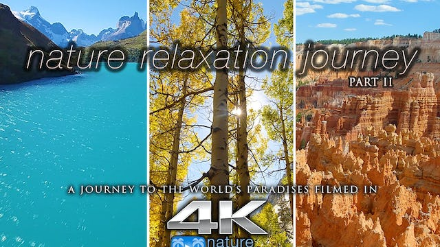 Nature Relaxation Journey in 4K (with Music) Dynamic 2 Hour Video
