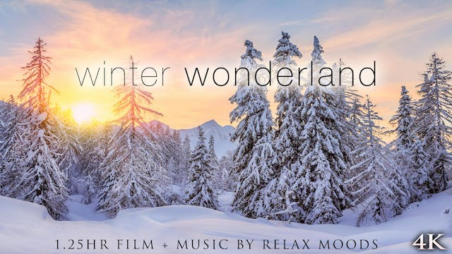 Winter Wonderland 4K Signature Dynami...