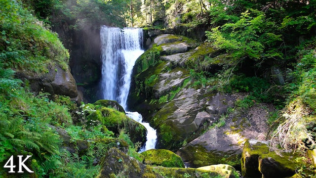 """""""Flow of Life"""" Earth Day Appreciation 30 Minute Nature Relaxation Film"""