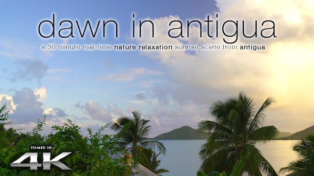 Dawn in Antigua 30 Min Static Sunrise from the Caribbean 4K