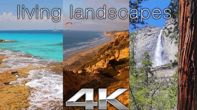 Living Landscapes 4HRs of Static Pure Nature Scenes