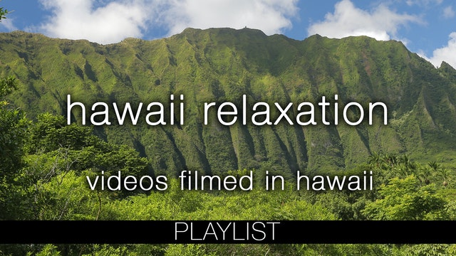 Hawaii Nature Relaxation Videos