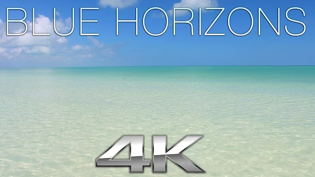 Blue Horizons (Nature Sounds) 1 Hr Dynamic Color Therapy Relaxation Video