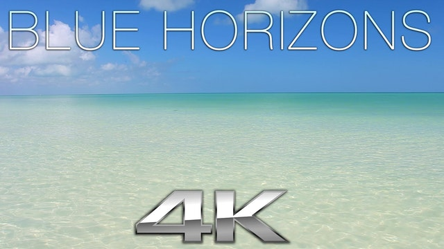 Blue Horizons (Nature Sounds) 1 Hr Dy...
