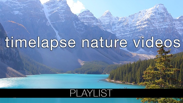 Timelapse Nature Relaxation Videos