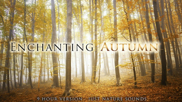 Enchanting Autumn (No Music) 9 HOUR Version