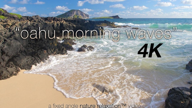 Oahu Morning Waves 1 Hr Nature Relaxation 1080p