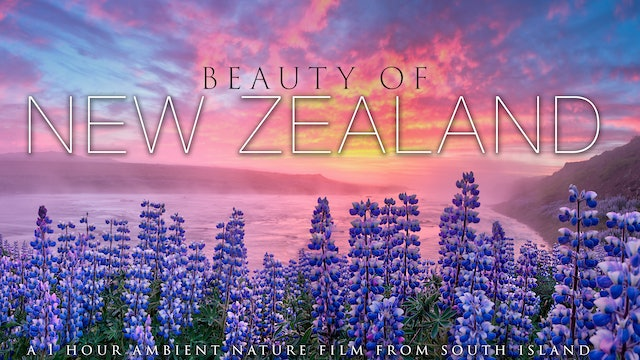 Beauty of New Zealand 4K (Just Nature Sounds) 1HR Nature Relaxation
