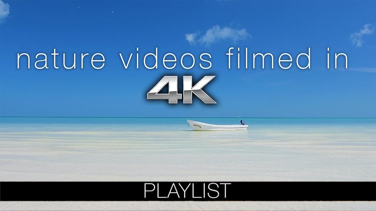Films Shot in 4K Ultra High Definition