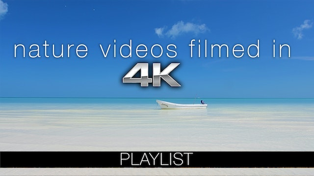 4K Nature Relaxation Collection
