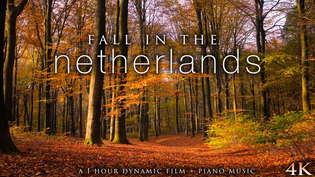 Fall in the Netherlands (+Piano Music...
