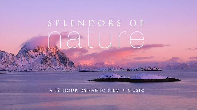 Splendors of Nature 12 HOUR Dynamic Film + Music Filmed in 4K