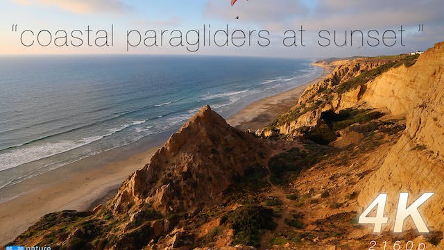Coastal Paragliders at Sunset 1HR Static Nature Video