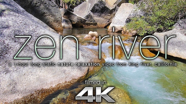 Zen River 1 HR Static Nature Scene Shot in 4K