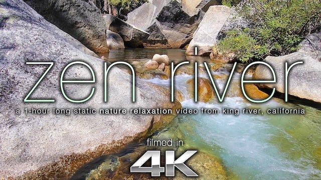 Zen River 1 HR Static Nature Scene Shot in 4K